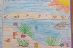 07_4C Lipari centro_Posidonia oceanica_DAD 12 maggio 2020