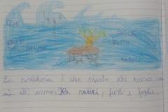 10 _ 4C Lipari centro_Posidonia oceanica_DAD 12 maggio 2020