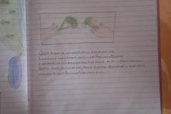 15_4C LIPARI centro_SCATOLA