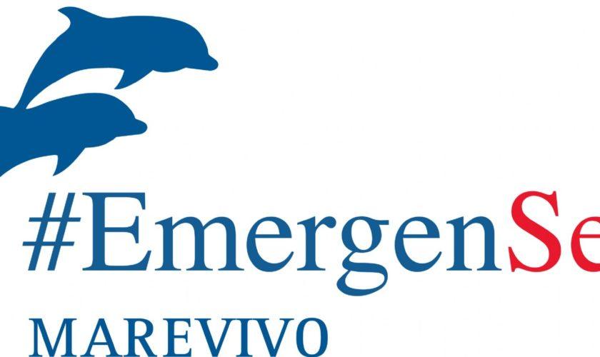 logo_emergensea_def_contorno